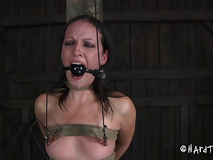 Hailey Young is now pledged and her pussy is getting the hard torture!
